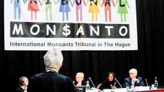 © Monsanto Tribunal
